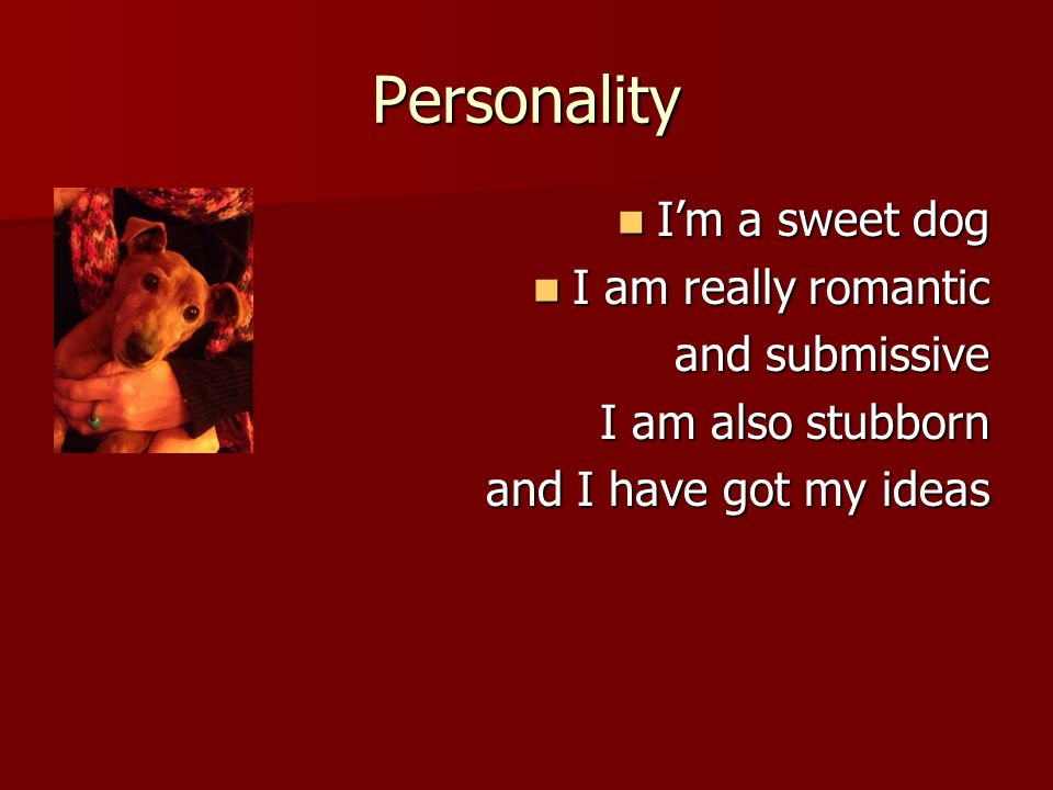 Personality Im a sweet dog Im a sweet dog I am really romantic I am really romantic and submissive I am also stubborn and I have got my ideas