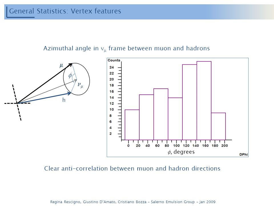 Regina Rescigno, Giustino DAmato, Cristiano Bozza – Salerno Emulsion Group – Jan 2009 General Statistics: Vertex features Azimuthal angle in frame between muon and hadrons, degrees h Clear anti-correlation between muon and hadron directions