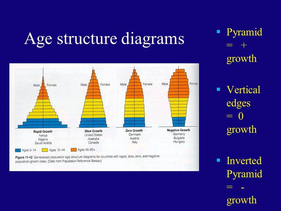 Population Dynamics Monday September 14 Th Ppt Download