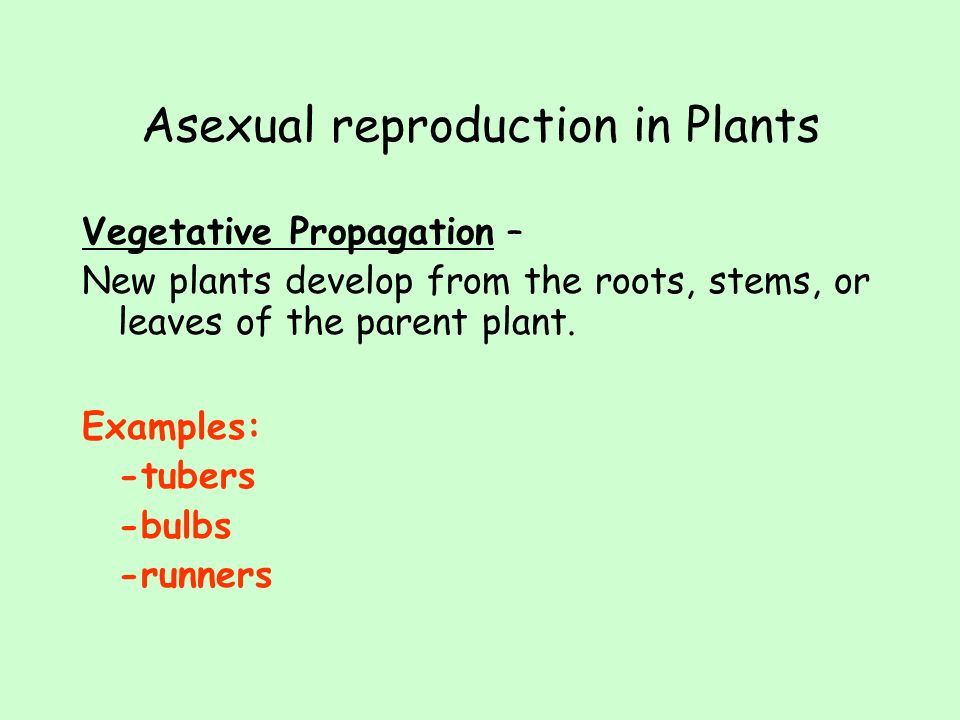 Advantages of asexual reproduction propagation constant