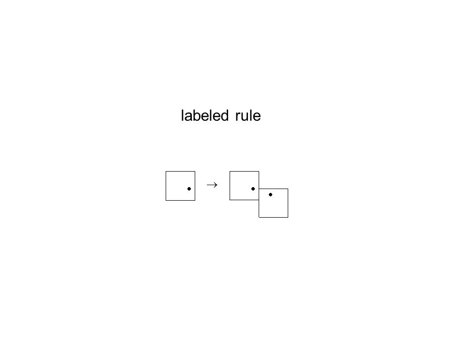 labeled rule