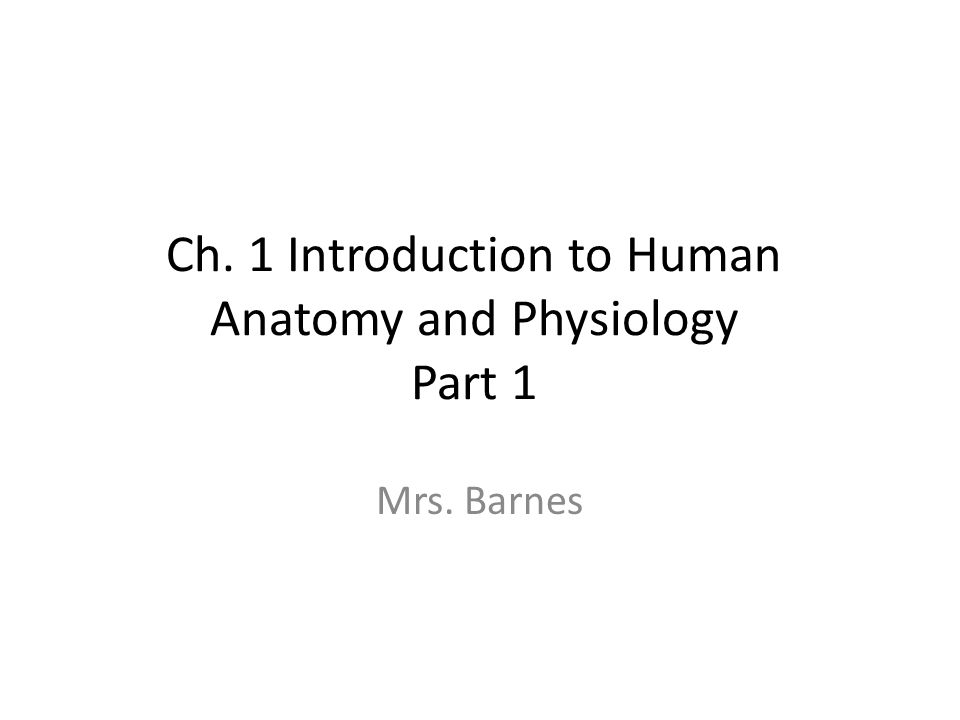 Ch. 1 Introduction to Human Anatomy and Physiology Part 1 Mrs ...