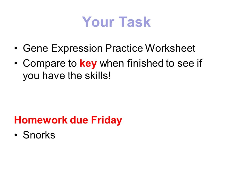 Gene Expression How Do Genotypes Bee Phenotypes 23 From Mom. Your Task Gene Expression Practice Worksheet Pare To Key When Finished See If You Have. Worksheet. Gene Expression Worksheet At Clickcart.co