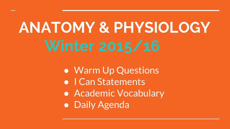 ANATOMY & PHYSIOLOGY Winter 2015/16 ○ Warm Up Questions ○ I Can ...