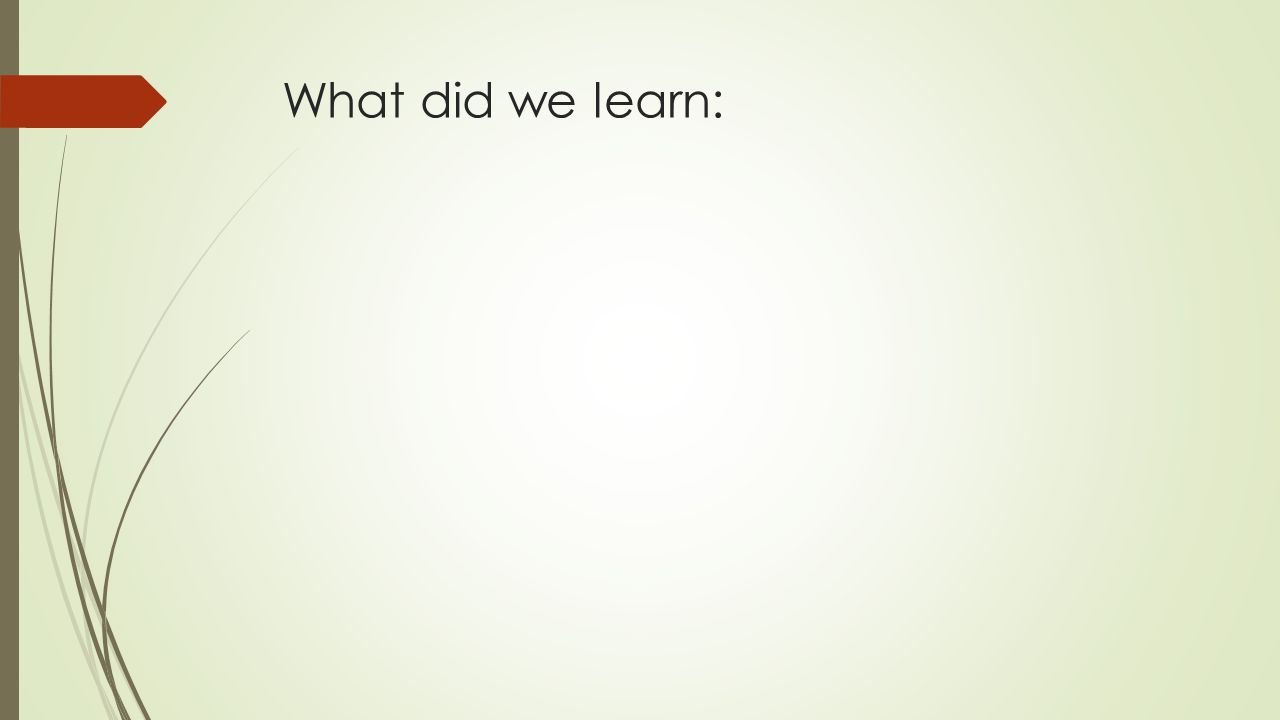 What did we learn: