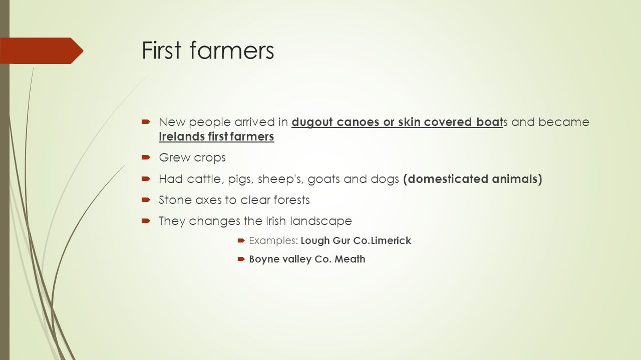 First farmers  New people arrived in dugout canoes or skin covered boat s and became Irelands first farmers  Grew crops  Had cattle, pigs, sheep s, goats and dogs (domesticated animals)  Stone axes to clear forests  They changes the Irish landscape  Examples: Lough Gur Co.Limerick  Boyne valley Co.