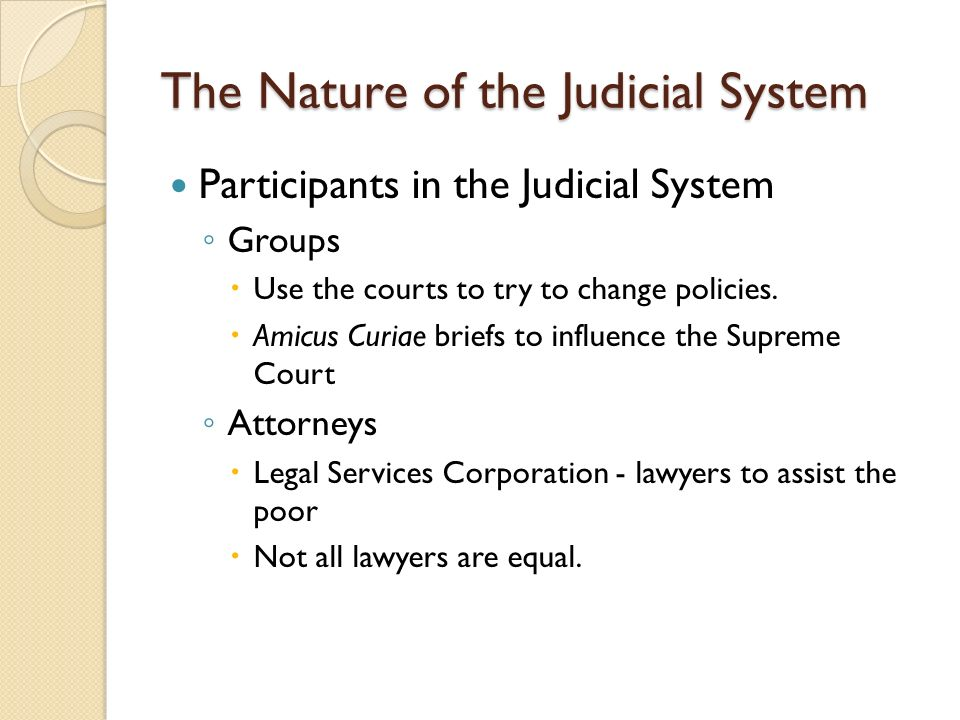 The Nature of the Judicial System Participants in the Judicial System ◦ Groups  Use the courts to try to change policies.