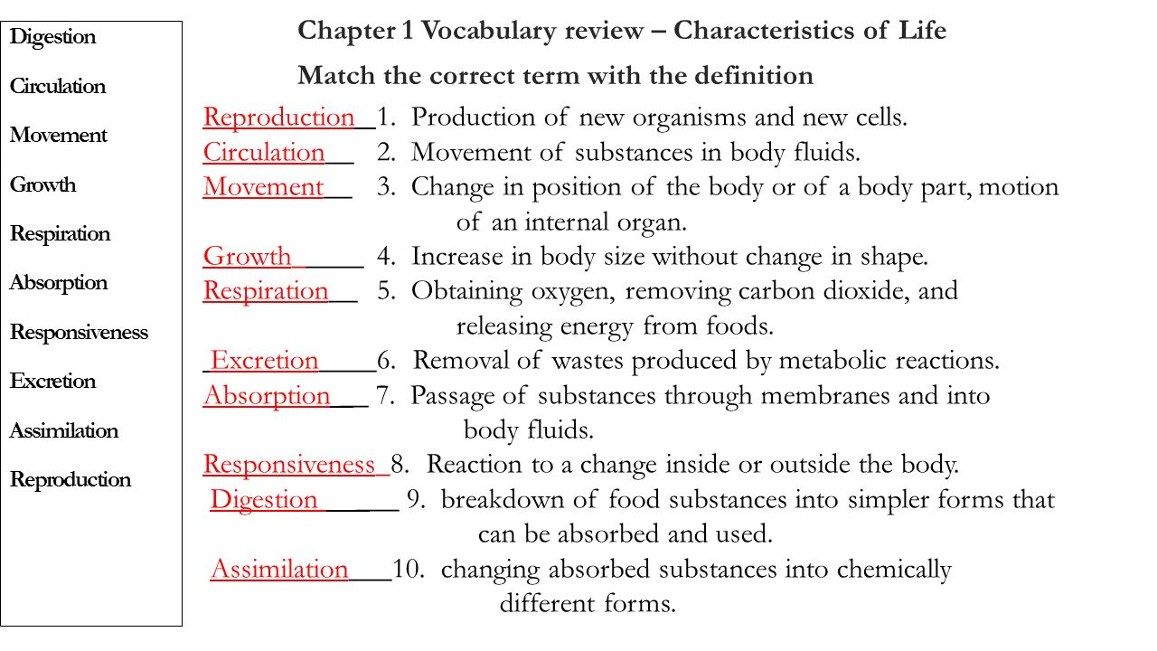 Anatomy And Physiology Honors Midterm Exam Review Part 1 Chapters