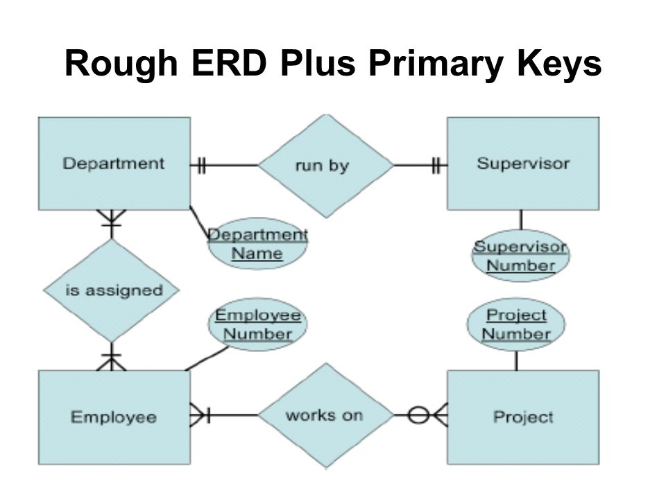 Entity Relationship Diagram Erd Objectives Define Terms Related