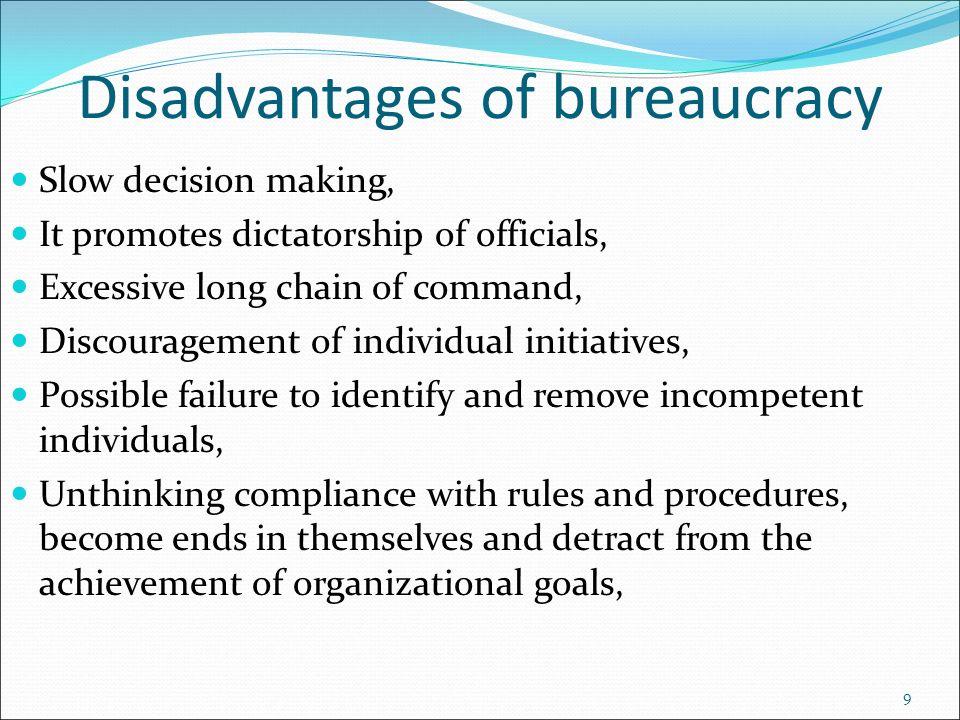 advantages of professional bureaucracy