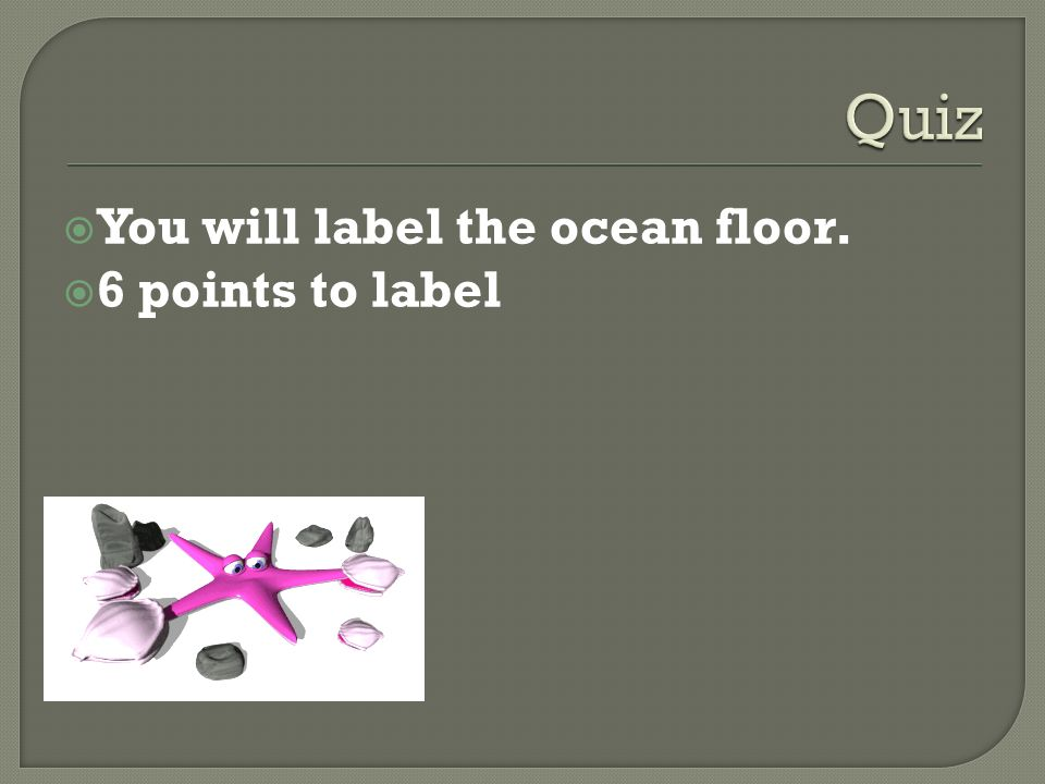 Finish The Worksheet On Intertidal Zone You Will Label The Ocean