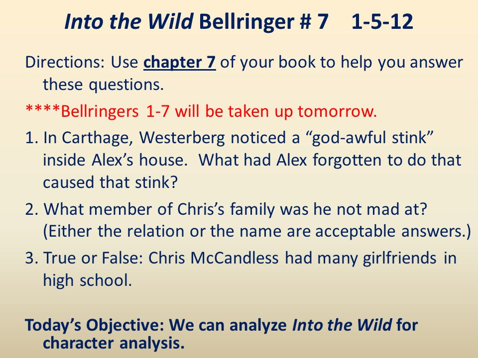 into the wild chapter analysis