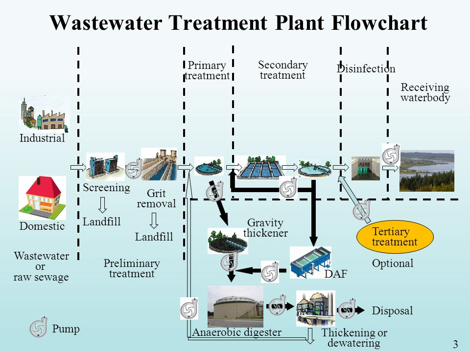 1 Wastewater Treatment Processes Jae K  Park, Professor