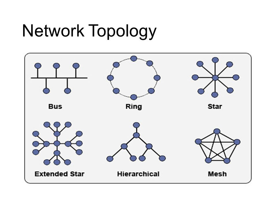 Chapter 2 Network topology and Networking devices  - ppt