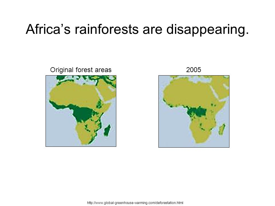 Rainforests In Africa Map.Rainforests Deforestation Africa S Rainforests Are Disappearing