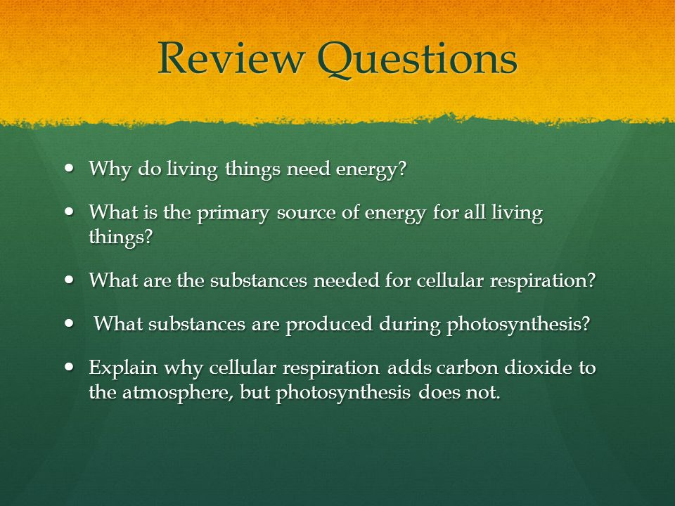 Review Questions Why do living things need energy.