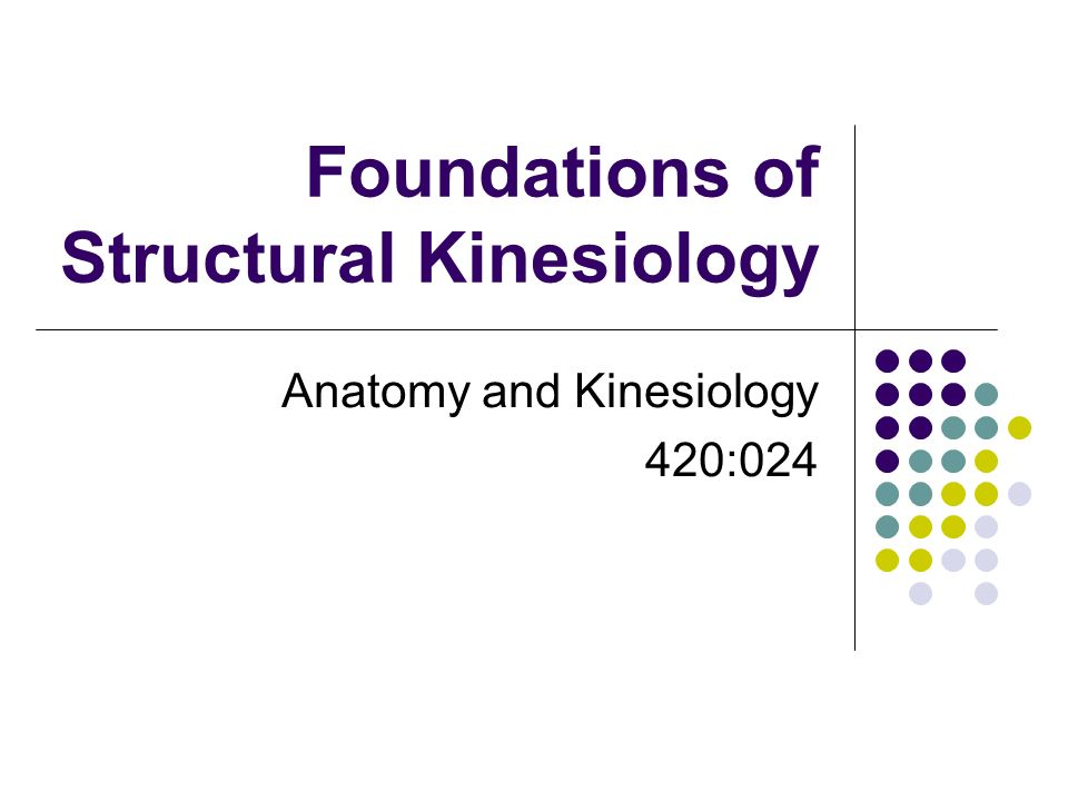 Foundations of Structural Kinesiology Anatomy and Kinesiology 420 ...