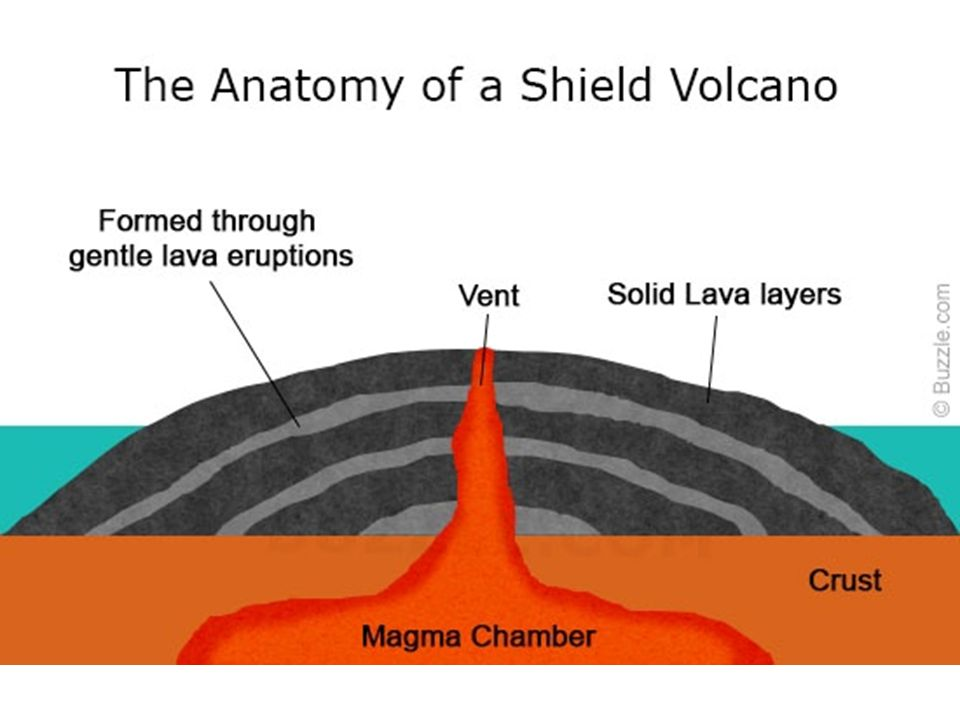 Shield volcanoes diagram interior wiring diagram for light switch volcanoes 2 shield volcanoes broad at the base with gently sloping rh slideplayer com diagram of inside of kilauea volcano cone volcanoes diagram ccuart Images