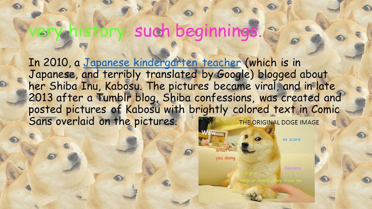 Such Wow Much Amaze A Presentation On The Doge Meme By Me Ppt