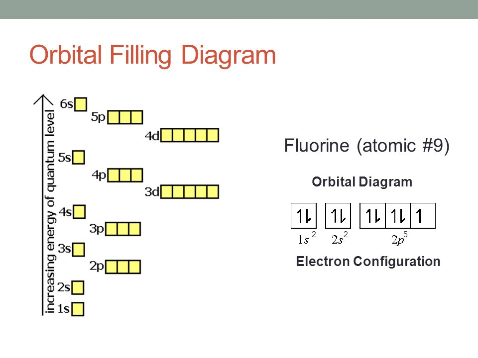 Flourine Orbital Filling Diagram Complete Wiring Diagrams