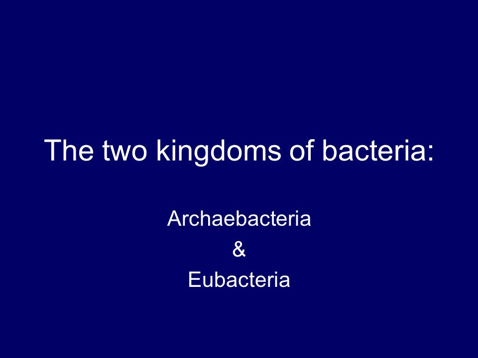 The two kingdoms of bacteria: archaebacteria & eubacteria. Ppt.
