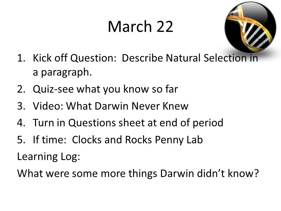Evolution Dailies April 27 1ck Off Question What Is The