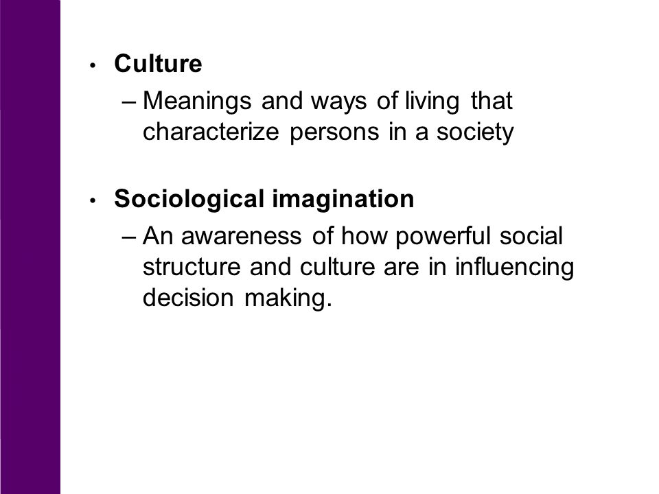 meaning of social structure in sociology