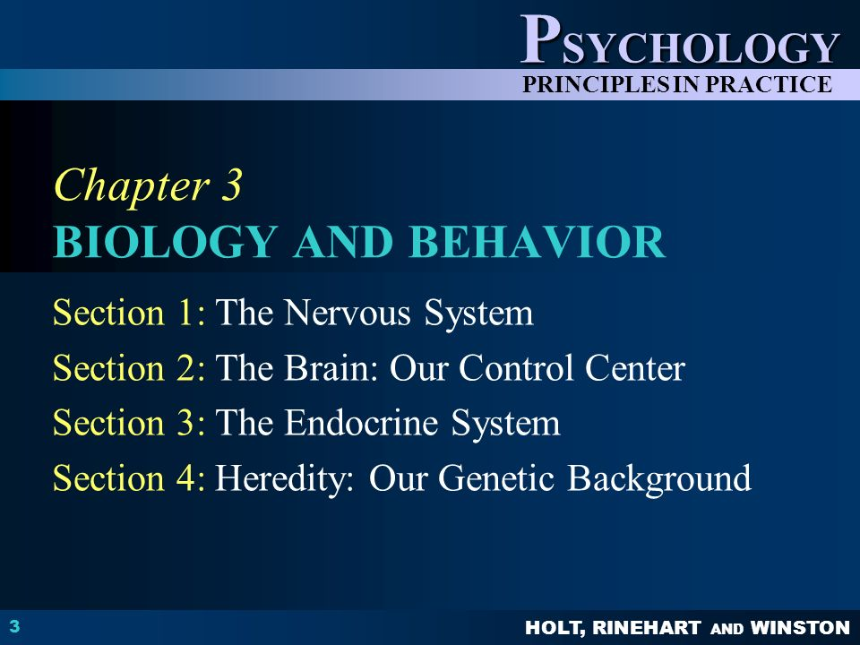 CHAPTER 3 Biology And Behavior Question What Major Areas Do