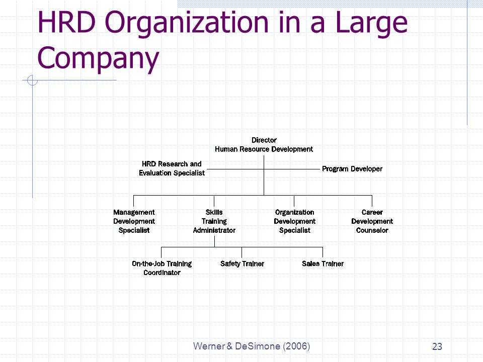 Werner & DeSimone (2006)23 HRD Organization in a Large Company