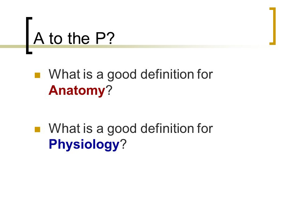 Anatomy and Physiology …A to the P…. A to the P? What is a good ...