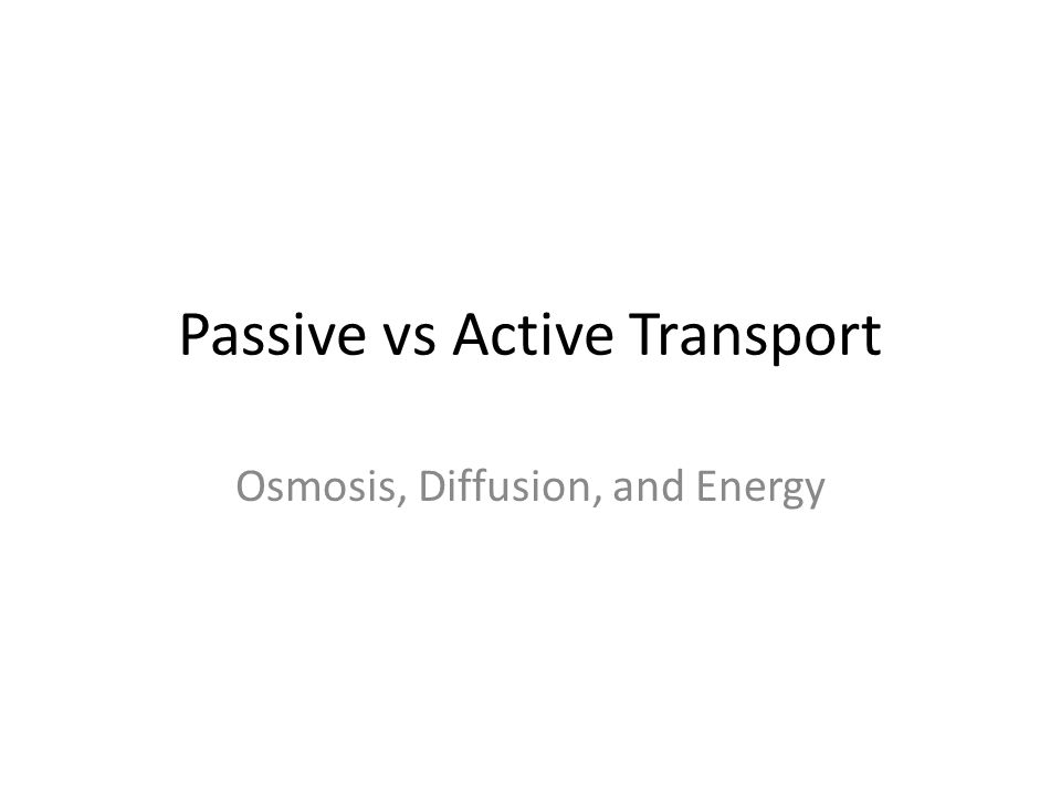 Passive vs Active Transport Osmosis, Diffusion, and Energy