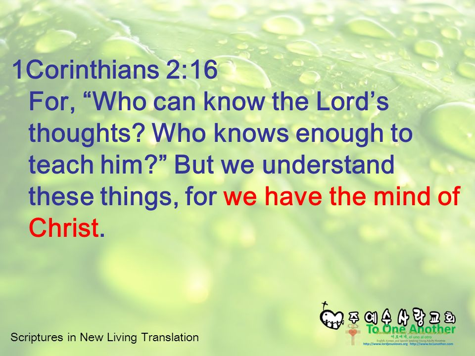 Scriptures in New Living Translation Why is Jesus the Only