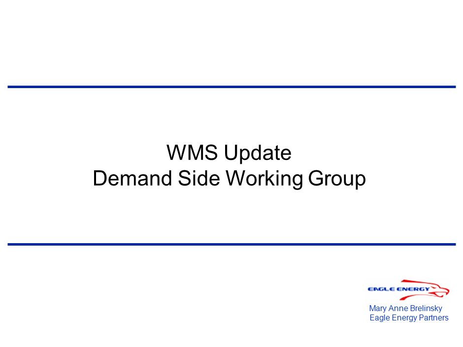 WMS Update Demand Side Working Group Mary Anne Brelinsky Eagle ...