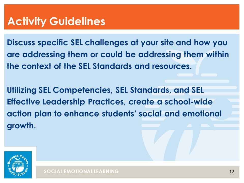 Discuss Specific Sel Challenges At Your Site And How You Are Addressing Them Or Could Be