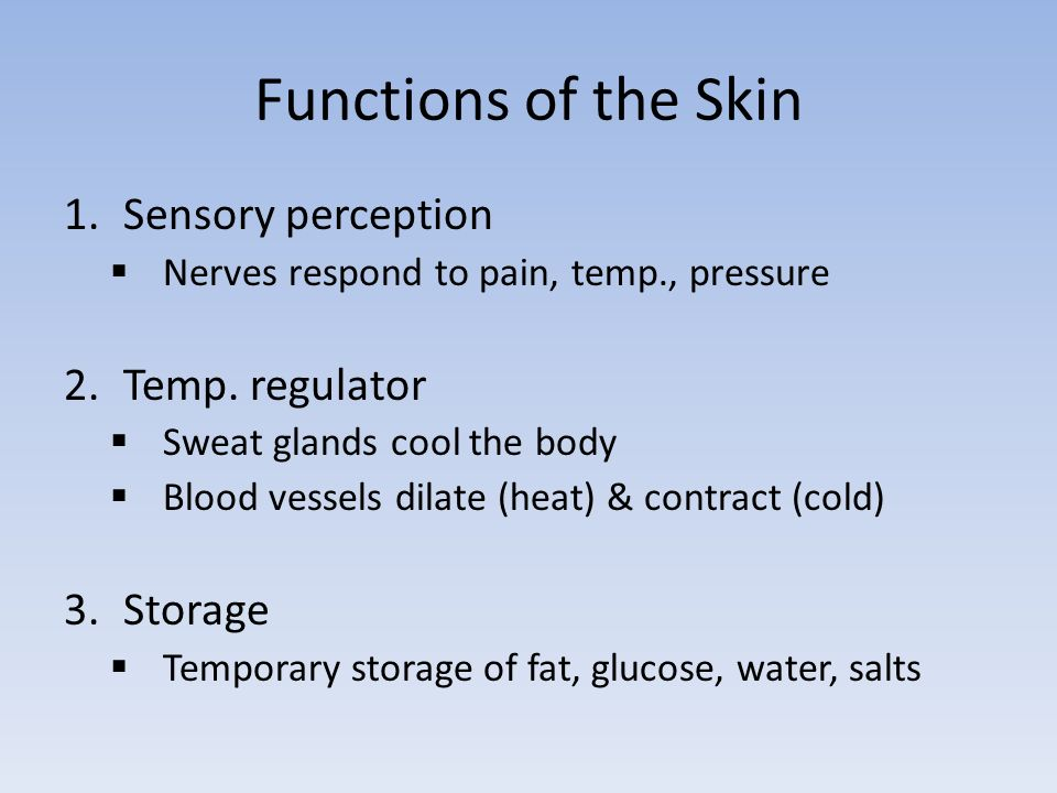 Anatomy & Physiology Functions of the Skin Pigmentation. - ppt download