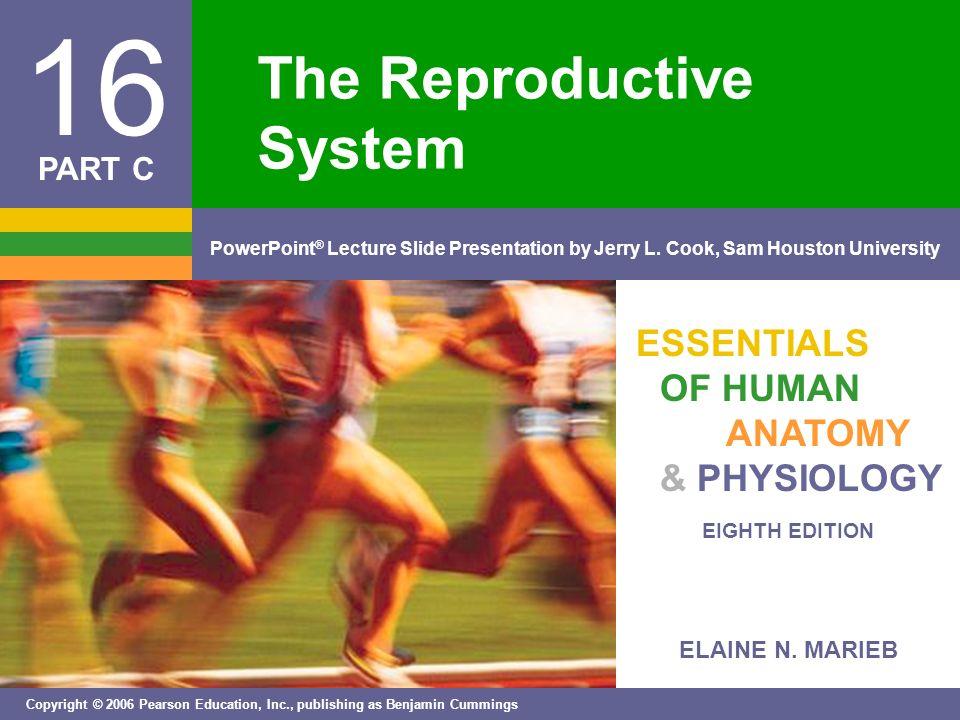 ELAINE N. MARIEB EIGHTH EDITION 16 Copyright © 2006 Pearson ...