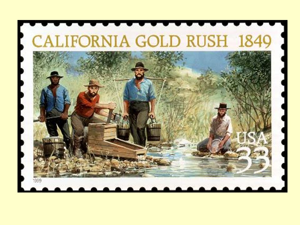 an introduction to the california gold rush The government's attitude to gold discoveries changed in 1848 with news of the california gold rush the promise of fortunes to be had across the pacific led thousands of men to leave the colony, creating labour shortages and economic depression.