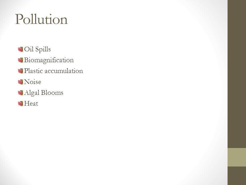 Pollution Oil Spills Biomagnification Plastic accumulation Noise Algal Blooms Heat