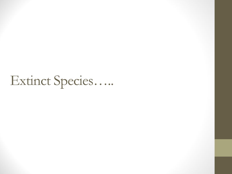 Extinct Species…..
