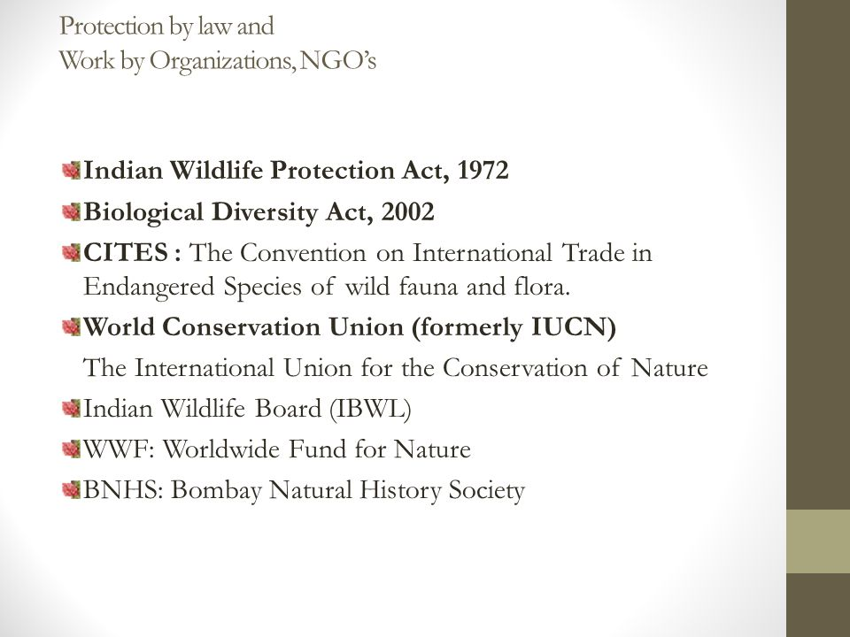 Protection by law and Work by Organizations, NGO's Indian Wildlife Protection Act, 1972 Biological Diversity Act, 2002 CITES : The Convention on International Trade in Endangered Species of wild fauna and flora.