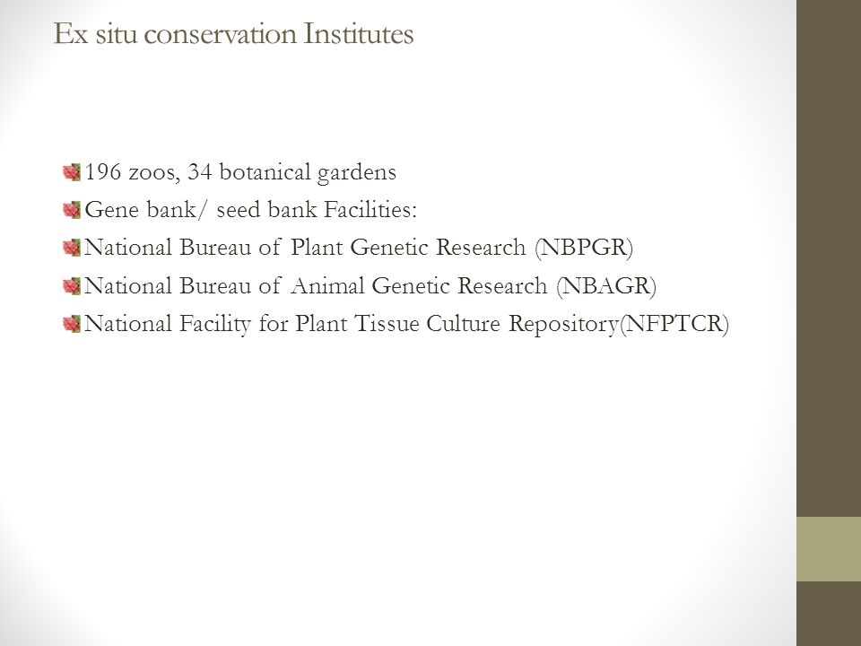 Ex situ conservation Institutes 196 zoos, 34 botanical gardens Gene bank/ seed bank Facilities: National Bureau of Plant Genetic Research (NBPGR) National Bureau of Animal Genetic Research (NBAGR) National Facility for Plant Tissue Culture Repository(NFPTCR)
