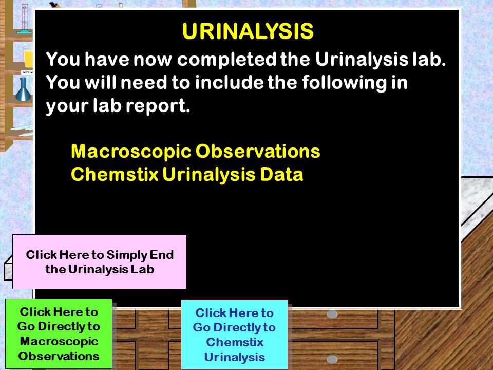 urinalysis lab report discussion
