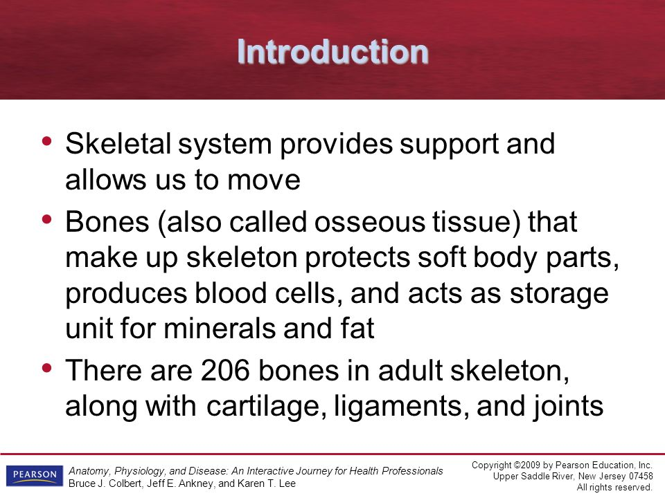 Anatomy, Physiology, & Disease An Interactive Journey for Health ...