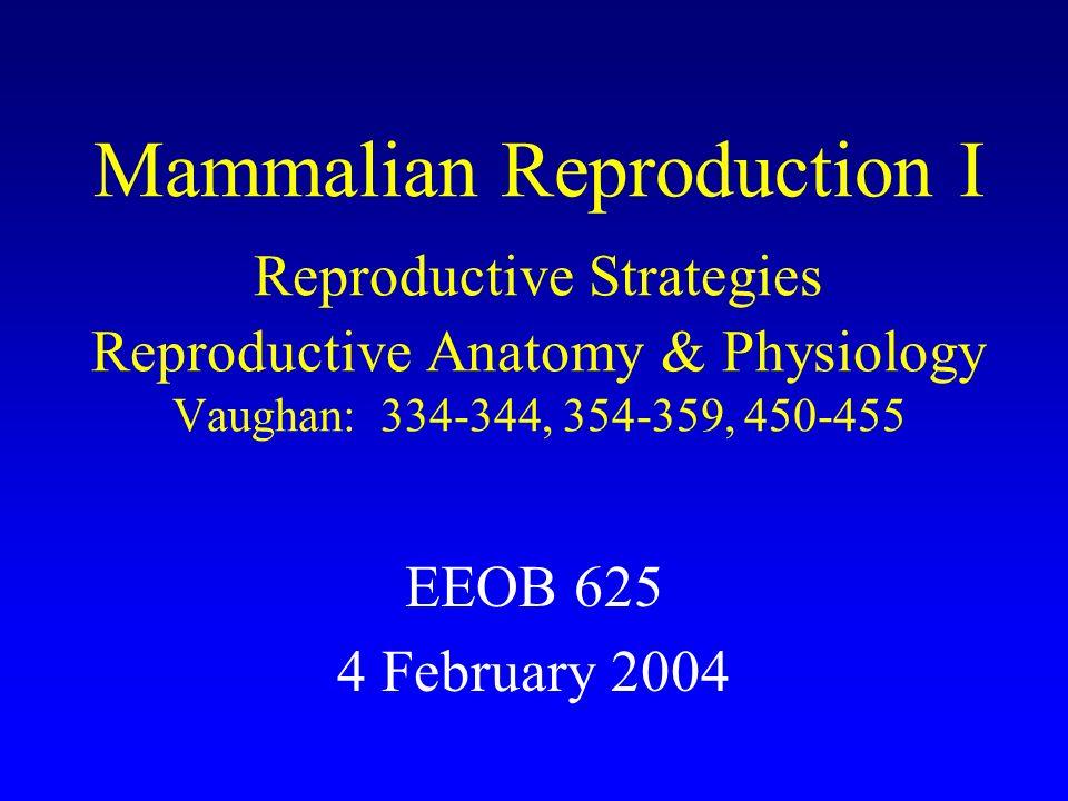 Mammalian Reproduction I Reproductive Strategies Reproductive ...