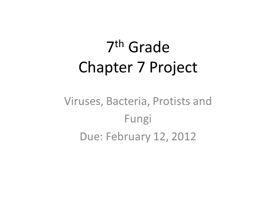 7 Th Grade Chapter 7 Project Viruses Bacteria Protists And