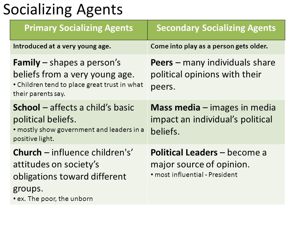 what are the agents of political socialization