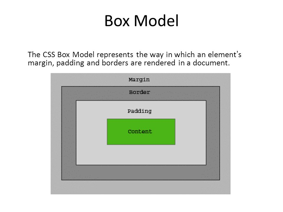 Html And Dreamweaver November 11th Agenda Box Model Displaying And
