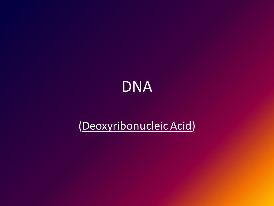 DNA (Deoxyribonucleic Acid)