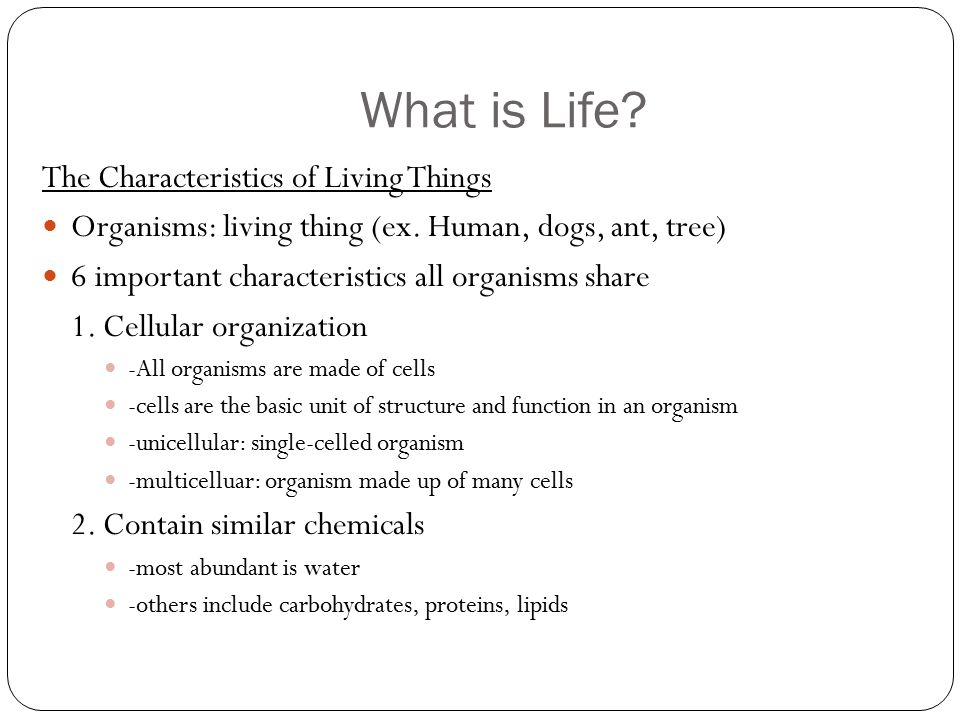 31 Characteristics Of Living Things Worksheet Graphics moreover Characteristics Of Living Things Worksheet   Homedressage additionally Have Fun Learning Living and Non Living Things Worksheets together with Characteristics Of Living Things Worksheet I on Life Science in addition Basic Needs Of Living Things Worksheet New ly Characteristics likewise Living And Non Things Worksheets All Move Worksheet Nonliving Grade besides Characteristics Living Things Worksheet 1   Describe   Where we live also living thing worksheet Inspiration of quiz worksheet characteristics furthermore  as well Living Things Worksheet Worksheets in addition Lesson Plan and Worksheets on Characteristics of Living Lhings as well 8 characteristics of life   Yelom digitalsite co as well Living Things Worksheet   living and non living   Pinterest further Product Tags Living and Nonliving Things Worksheets on additionally Characteristics Of Living Things Worksheet   Semesprit Worksheet likewise Characteristics  Clification of Living Things by Scottish Twit. on characteristics of living things worksheet