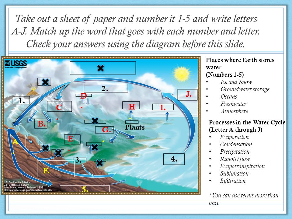 The water cycle from the USGS Water Science School